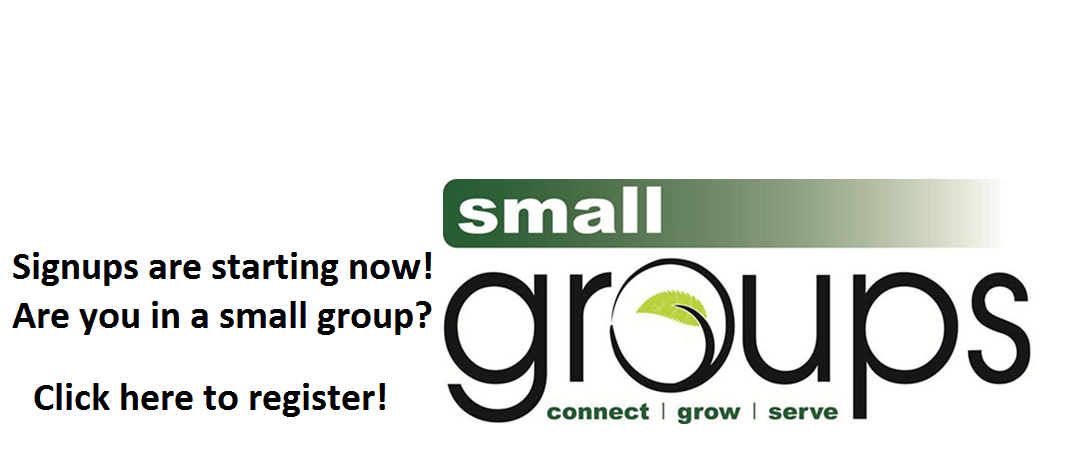 Small-groups